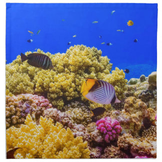 A Coral Reef in the Red Sea near Egypt Napkin