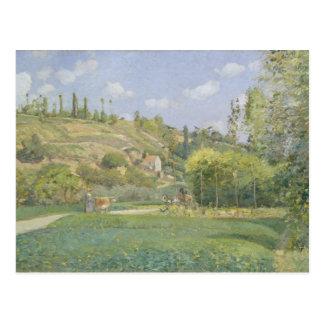 A Cowherd at Valhermeil, Auvers-sur-Oise Postcard
