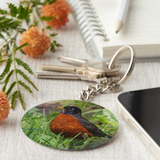 A Curious American Robin Key Ring