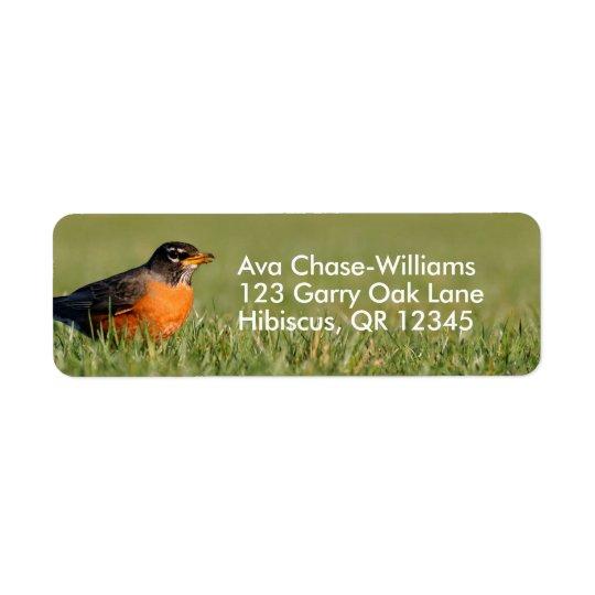 A Curious American Robin Return Address Label