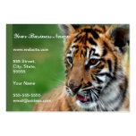 A cute baby tiger business card template
