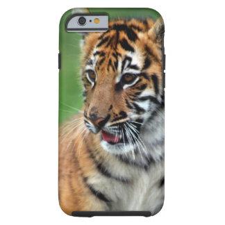 A cute baby tiger tough iPhone 6 case