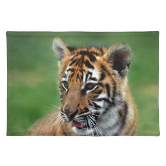 A cute baby tiger placemat