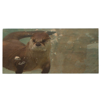 A cute Brown otter swimming in a clear blue pool Wood USB Flash Drive