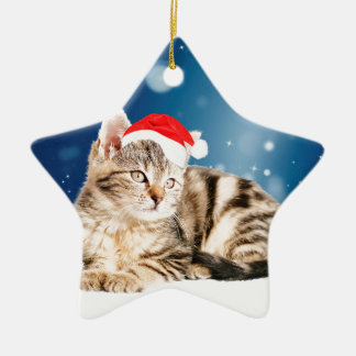A Cute Cat wearing red Santa hat Christmas Snow Ceramic Star Decoration