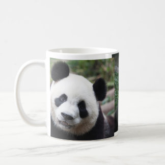 A Cute panda mug! Coffee Mug