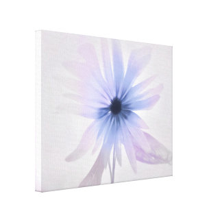 A Daisy with Purple, Pink and Gray Canvas Print