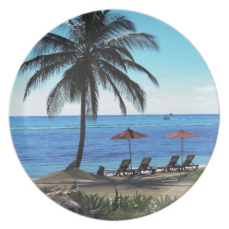 A day under the palm tree plate