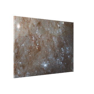 A Detailed Look at Spiral Galaxy M101 Canvas Print