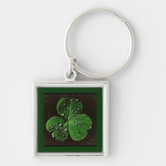 A Dew Covered Shamrock Silver-Colored Square Key Ring