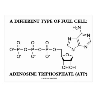 A Different Type Of Fuel Cell (ATP) Postcard