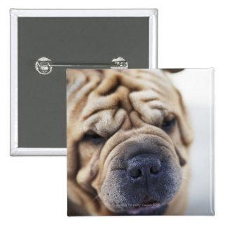 A dog, close-up. 15 cm square badge