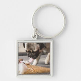 A dog eating an ice cream from a pavement Silver-Colored square key ring