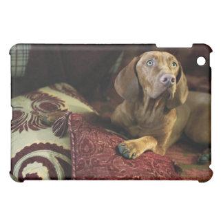 A dog lying on pillows. iPad mini covers