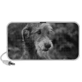 A dog outside. mini speakers