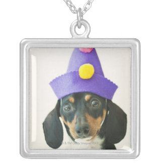 A dog wearing a funny hat silver plated necklace