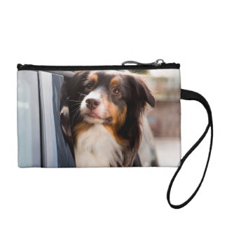 A Dog With Her Head Out of a Car Window Change Purses