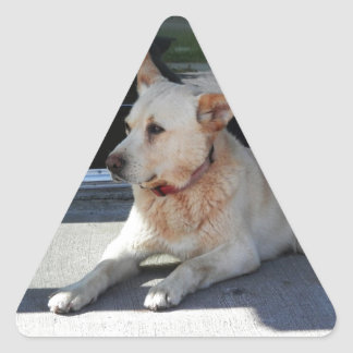 A Dog WIth Story Triangle Sticker