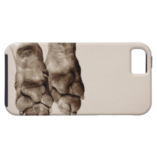 A dogs paws iPhone 5 cases