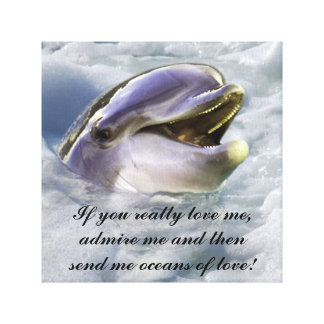 A dolphin's best smile stretched canvas print