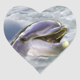 A dolphins best smile heart sticker