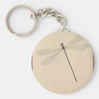 A Dragonfly, by Nicolaas Struyk, early 18th c. Key Ring