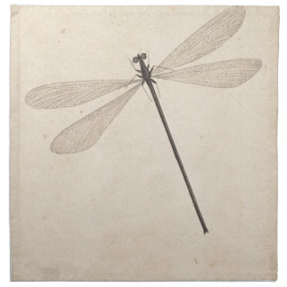 A Dragonfly, by Nicolaas Struyk, early 18th c. Napkin