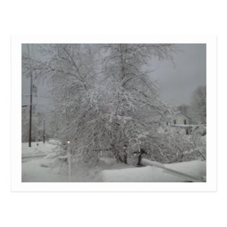 A dreary Winter Day Postcard