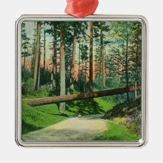 A Fallen Tree at Woodland Park Scene Metal Ornament