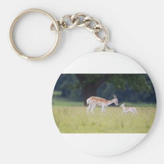 A Fallow Deer (Doe) with Fawn Basic Round Button Key Ring