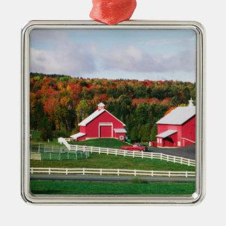 A farm in Vermont near Peacham. RELEASE Silver-Colored Square Decoration