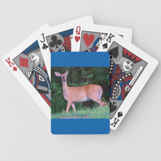 A female deer off of Highway 100 Bicycle Playing Cards