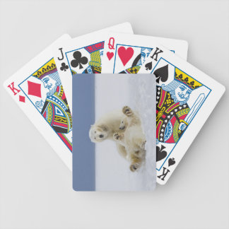 A female polar bear and her cub play in the snow bicycle playing cards