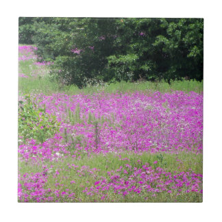 A field of pink spring wildflowers ceramic tile