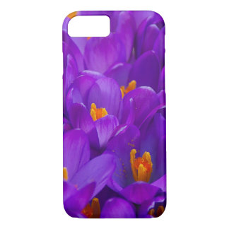 A Field of Purple Crocuses iPhone 7 Case