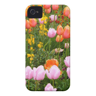 A field of tulips in Amsterdam Case-Mate iPhone 4 Cases