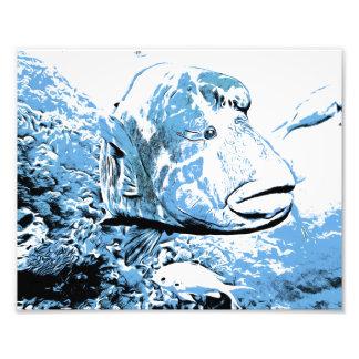 A fish called Wally Photo Print