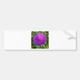 A Flower Bumper Sticker