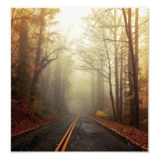 A foggy morning in South Carolina Photo Print