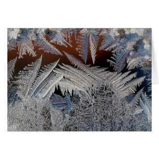 A forest of ice crystals greeting card