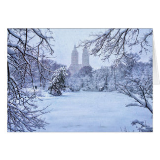 A Frozen Pond In Central Park Card