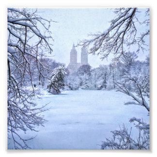 A Frozen Pond In Central Park Photo Print