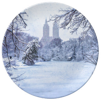 A Frozen Pond In Central Park Porcelain Plates