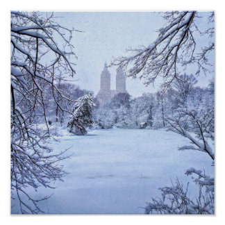 A Frozen Pond In Central Park Poster