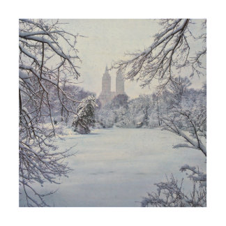 A Frozen Pond In Central Park Wood Print