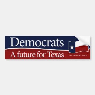 A future for Texas Bumper Sticker