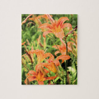 A Garden of Orange Tiger Lilies Jigsaw Puzzle