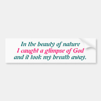 A glimpse of God Bumper Sticker
