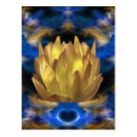 A gold lotus flower and reflections