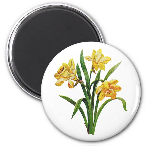 A Golden Host of Embroidered Daffodils Fridge Magnet